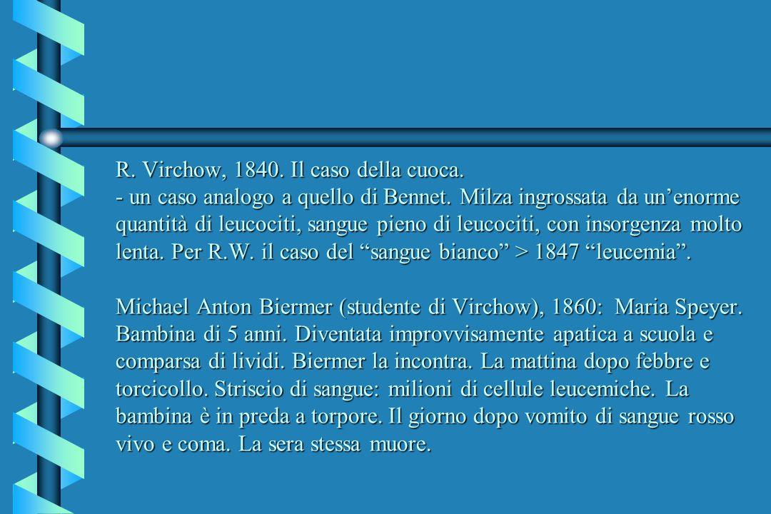 R. Virchow, 1840. Il caso della cuoca