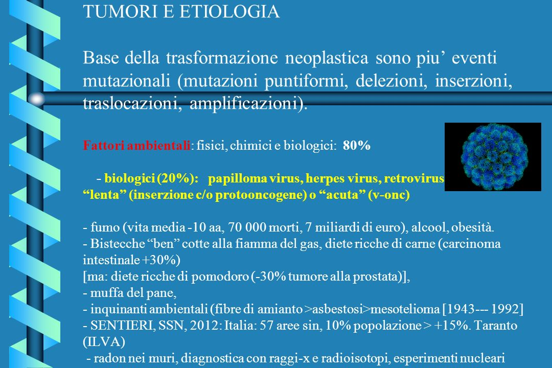 TUMORI E ETIOLOGIA Base della trasformazione neoplastica sono piu' eventi mutazionali (mutazioni puntiformi, delezioni, inserzioni, traslocazioni, amplificazioni).