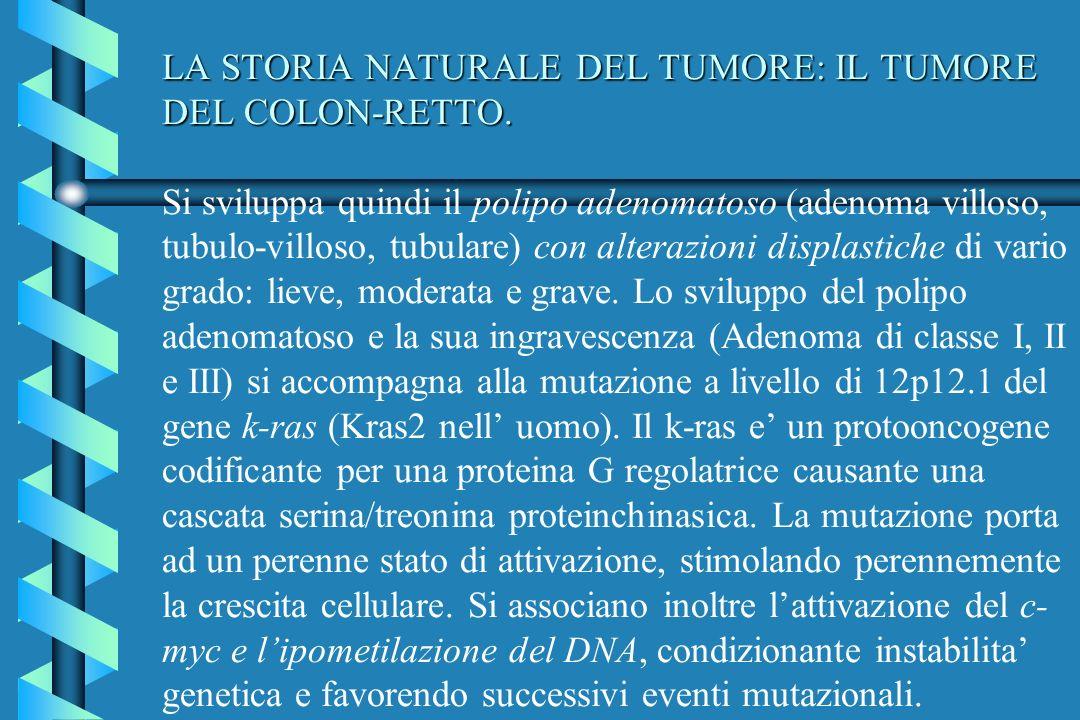 LA STORIA NATURALE DEL TUMORE: IL TUMORE DEL COLON-RETTO