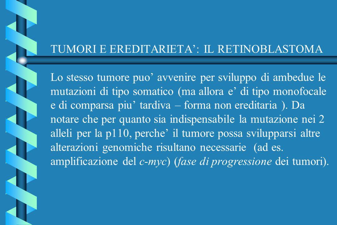 TUMORI E EREDITARIETA': IL RETINOBLASTOMA Lo stesso tumore puo' avvenire per sviluppo di ambedue le mutazioni di tipo somatico (ma allora e' di tipo monofocale e di comparsa piu' tardiva – forma non ereditaria ).