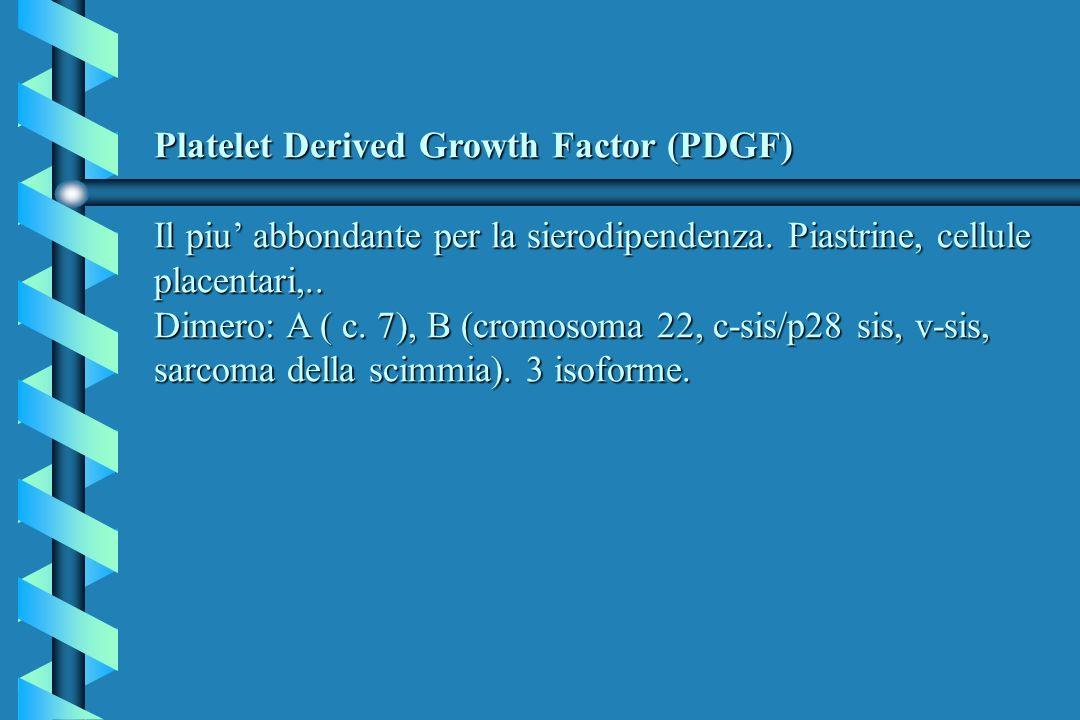 Platelet Derived Growth Factor (PDGF) Il piu' abbondante per la sierodipendenza.