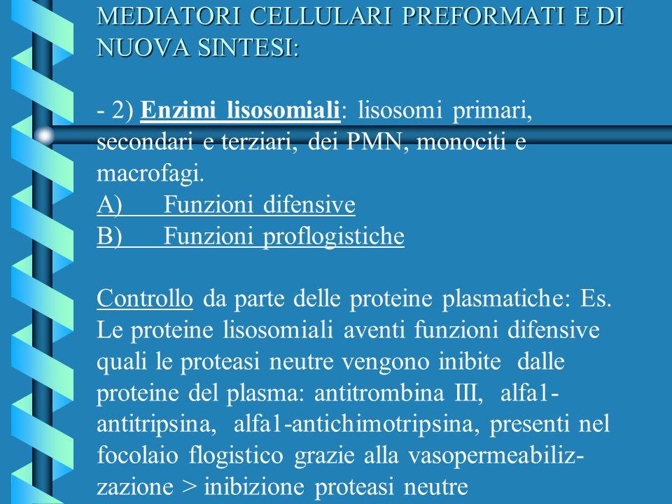 MEDIATORI CELLULARI PREFORMATI E DI NUOVA SINTESI: - 2) Enzimi lisosomiali: lisosomi primari, secondari e terziari, dei PMN, monociti e macrofagi.