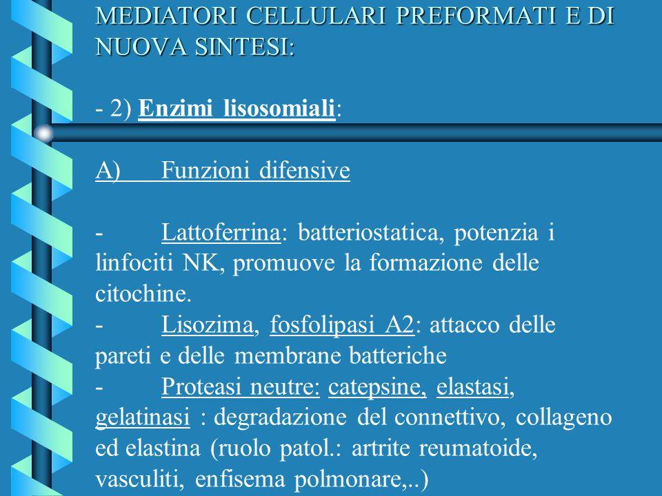 MEDIATORI CELLULARI PREFORMATI E DI NUOVA SINTESI: - 2) Enzimi lisosomiali: A) Funzioni difensive - Lattoferrina: batteriostatica, potenzia i linfociti NK, promuove la formazione delle citochine.
