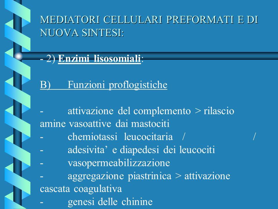 MEDIATORI CELLULARI PREFORMATI E DI NUOVA SINTESI: - 2) Enzimi lisosomiali: B) Funzioni proflogistiche - attivazione del complemento > rilascio amine vasoattive dai mastociti - chemiotassi leucocitaria / / - adesivita' e diapedesi dei leucociti - vasopermeabilizzazione - aggregazione piastrinica > attivazione cascata coagulativa - genesi delle chinine