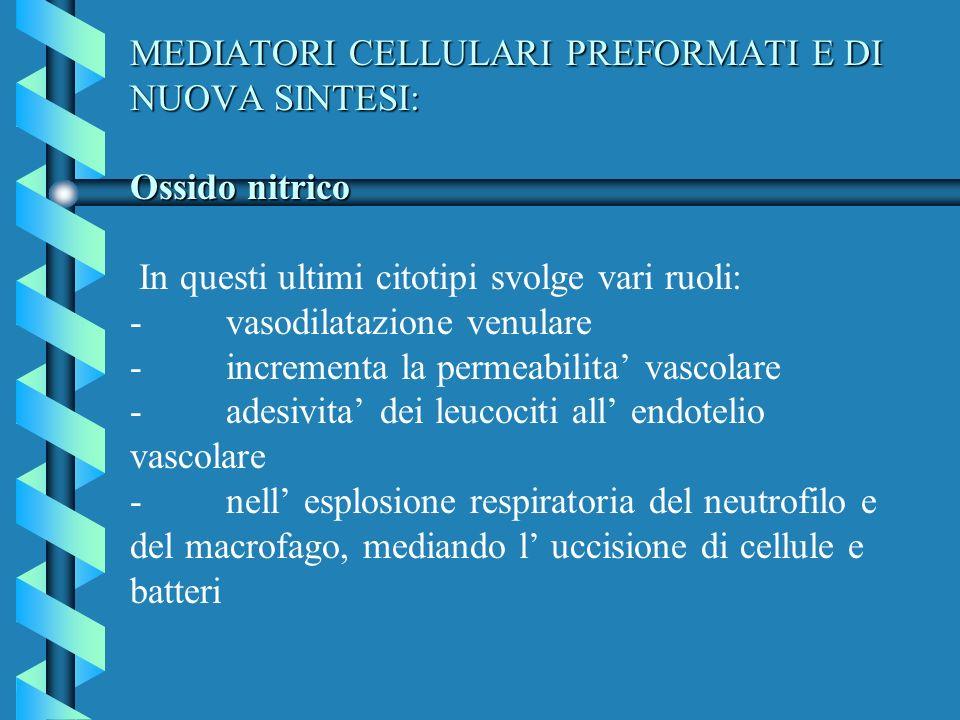 MEDIATORI CELLULARI PREFORMATI E DI NUOVA SINTESI: Ossido nitrico In questi ultimi citotipi svolge vari ruoli: - vasodilatazione venulare - incrementa la permeabilita' vascolare - adesivita' dei leucociti all' endotelio vascolare - nell' esplosione respiratoria del neutrofilo e del macrofago, mediando l' uccisione di cellule e batteri