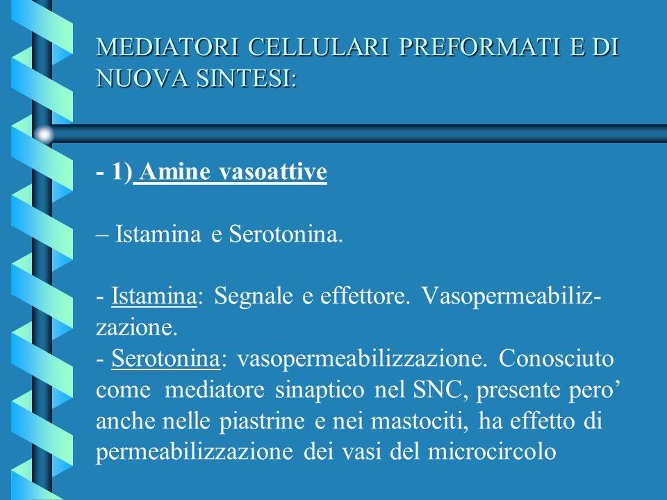 MEDIATORI CELLULARI PREFORMATI E DI NUOVA SINTESI: - 1) Amine vasoattive – Istamina e Serotonina.