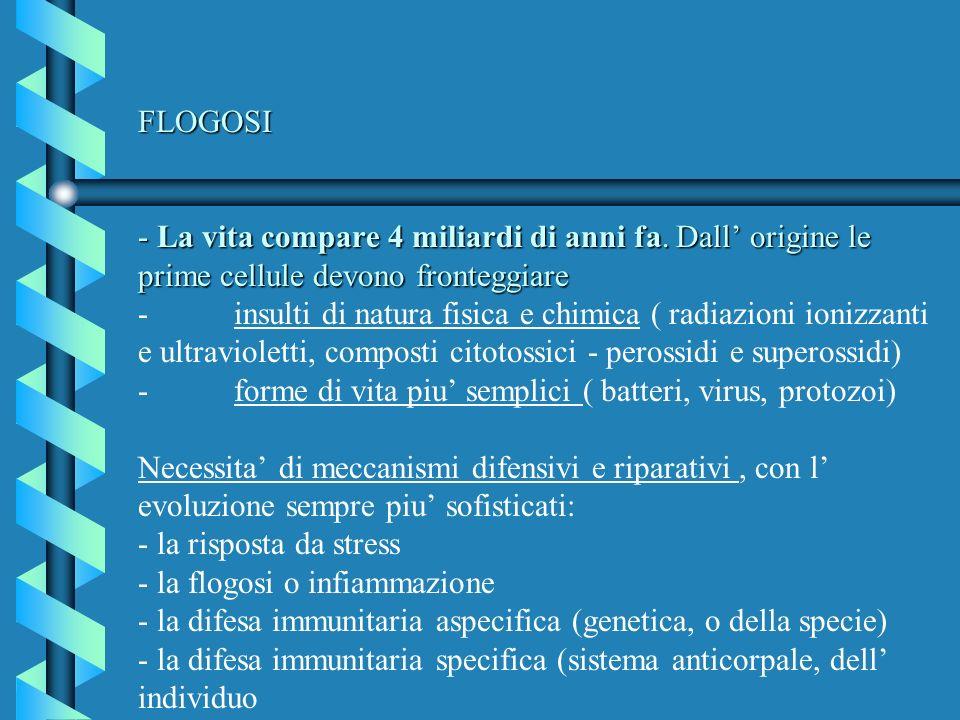 FLOGOSI - La vita compare 4 miliardi di anni fa