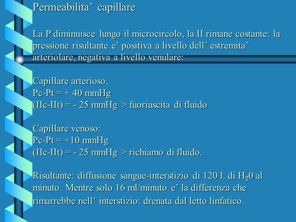 Permeabilita' capillare La P diminuisce lungo il microcircolo, la II rimane costante: la pressione risultante e' positiva a livello dell' estremita' arteriolare, negativa a livello venulare: Capillare arterioso: Pc-Pt = + 40 mmHg (IIc-IIt) = - 25 mmHg > fuoriuscita di fluido Capillare venoso: Pc-Pt = +10 mmHg (IIc-IIt) = - 25 mmHg > richiamo di fluido.
