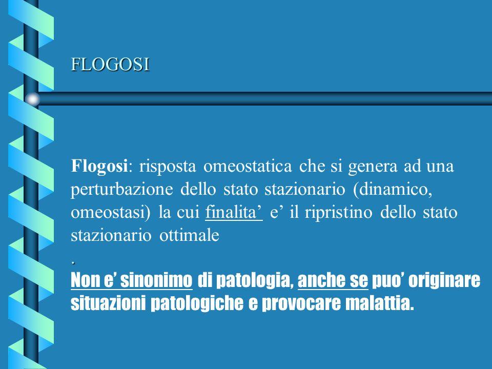FLOGOSI Flogosi: risposta omeostatica che si genera ad una perturbazione dello stato stazionario (dinamico, omeostasi) la cui finalita' e' il ripristino dello stato stazionario ottimale .