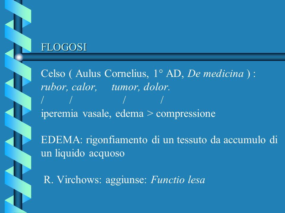 FLOGOSI Celso ( Aulus Cornelius, 1° AD, De medicina ) : rubor, calor, tumor, dolor.