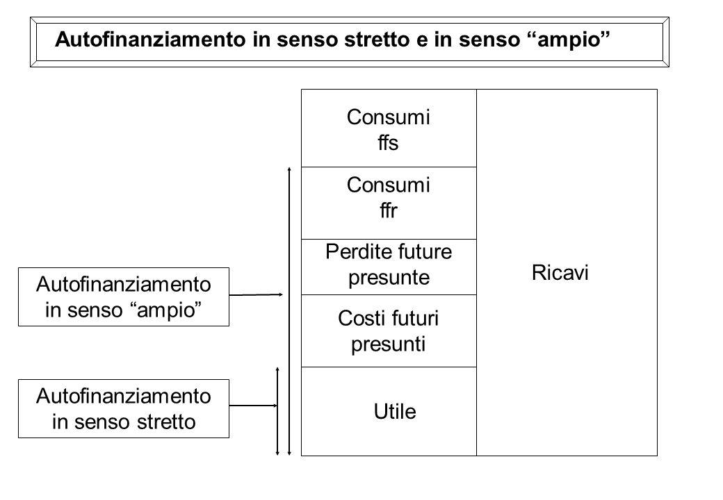 Autofinanziamento in senso stretto e in senso ampio