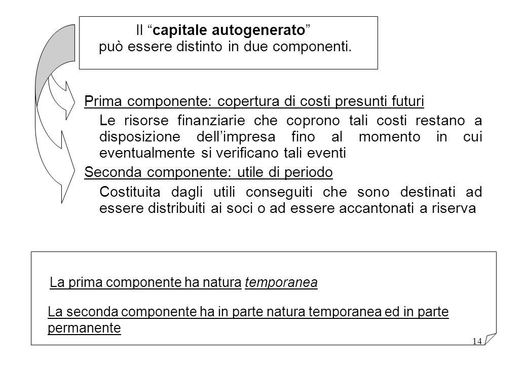 Il capitale autogenerato può essere distinto in due componenti.