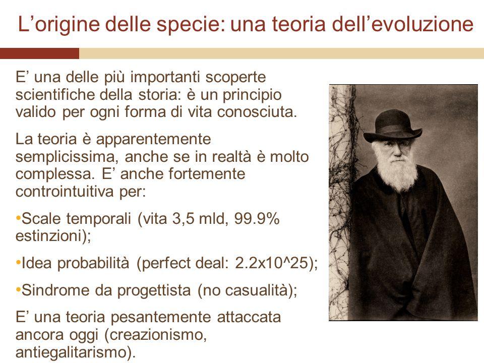 L'origine delle specie: una teoria dell'evoluzione