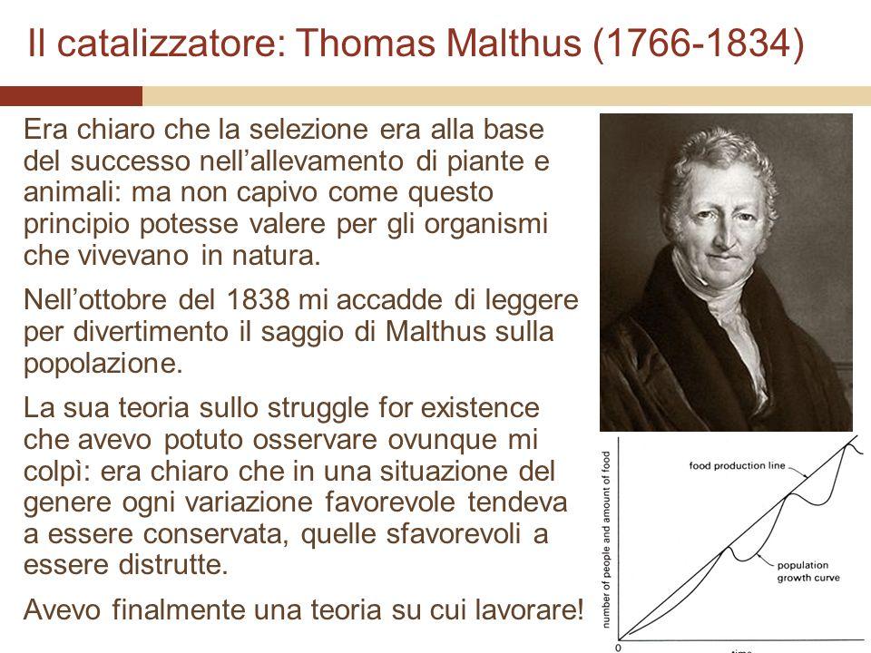 Il catalizzatore: Thomas Malthus (1766-1834)