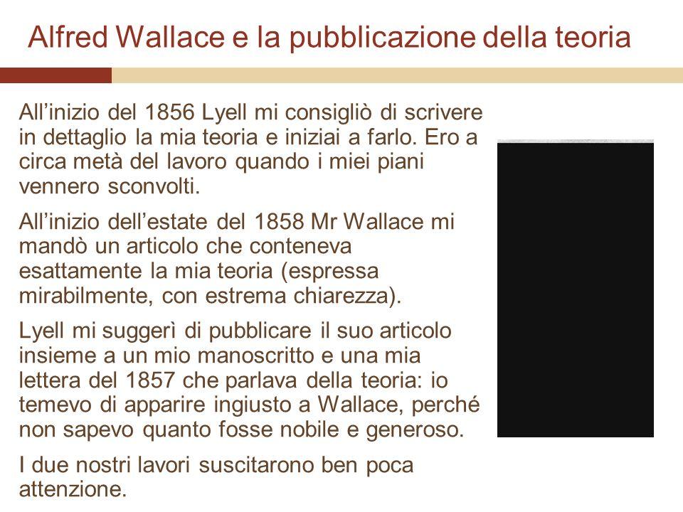 Alfred Wallace e la pubblicazione della teoria