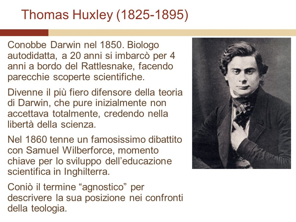 Thomas Huxley (1825-1895)
