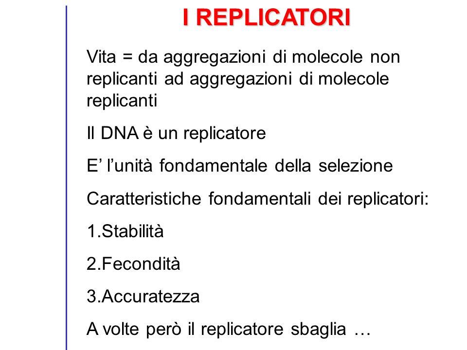 I REPLICATORI Vita = da aggregazioni di molecole non replicanti ad aggregazioni di molecole replicanti.