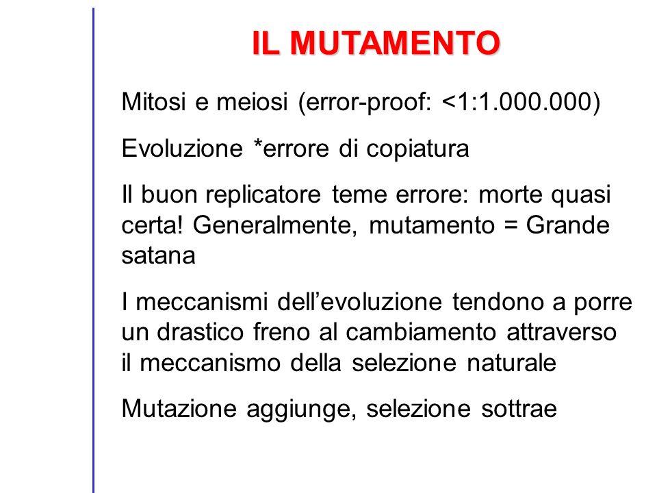 IL MUTAMENTO Mitosi e meiosi (error-proof: <1:1.000.000)