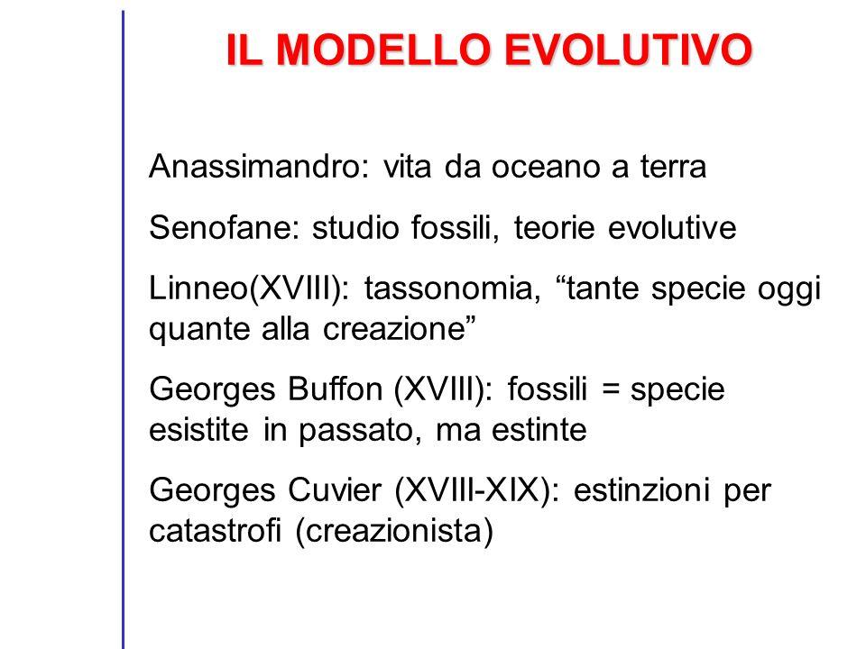 IL MODELLO EVOLUTIVO Anassimandro: vita da oceano a terra