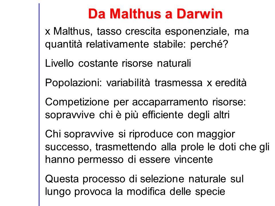 Da Malthus a Darwin x Malthus, tasso crescita esponenziale, ma quantità relativamente stabile: perché