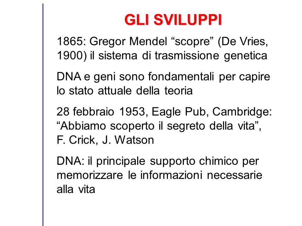 GLI SVILUPPI 1865: Gregor Mendel scopre (De Vries, 1900) il sistema di trasmissione genetica.