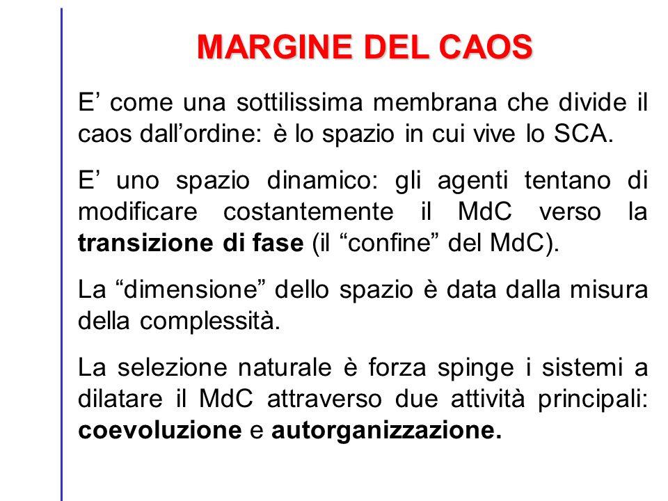 MARGINE DEL CAOS E' come una sottilissima membrana che divide il caos dall'ordine: è lo spazio in cui vive lo SCA.