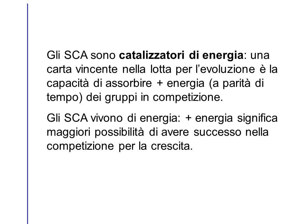 Gli SCA sono catalizzatori di energia: una carta vincente nella lotta per l'evoluzione è la capacità di assorbire + energia (a parità di tempo) dei gruppi in competizione.