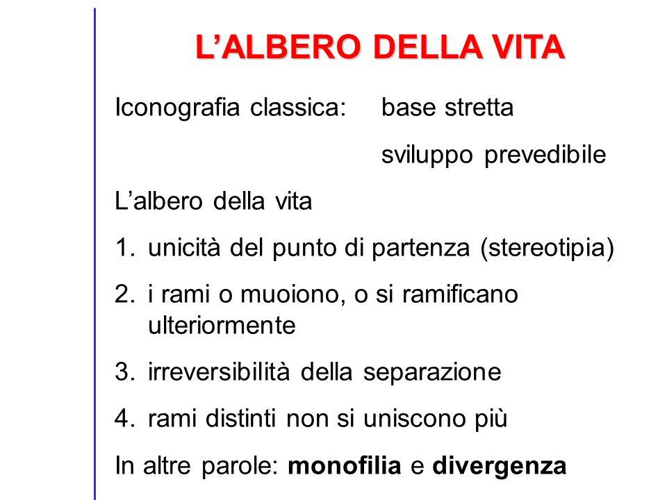 L'ALBERO DELLA VITA Iconografia classica: base stretta