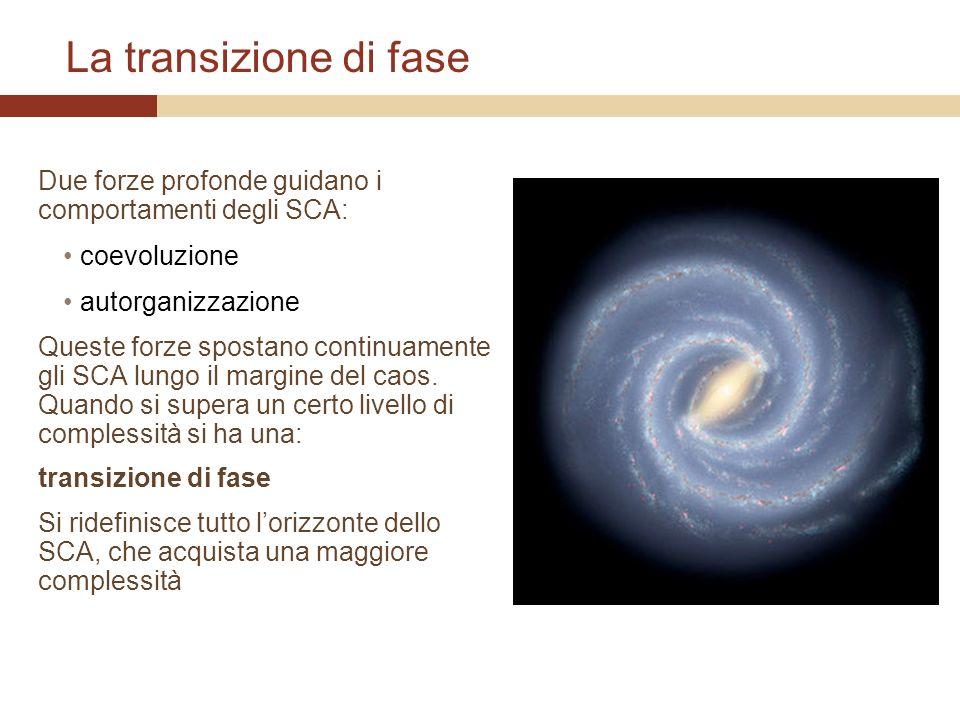 La transizione di fase Due forze profonde guidano i comportamenti degli SCA: coevoluzione. autorganizzazione.