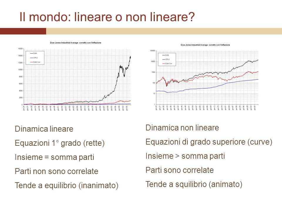 Il mondo: lineare o non lineare