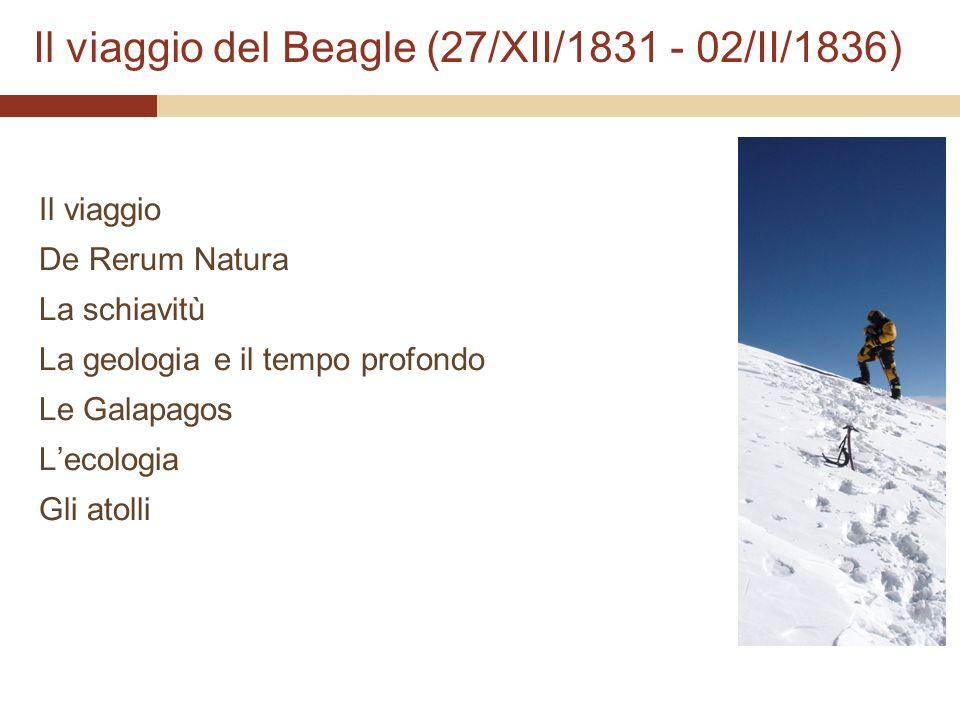 Il viaggio del Beagle (27/XII/1831 - 02/II/1836)