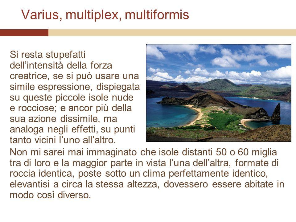 Varius, multiplex, multiformis