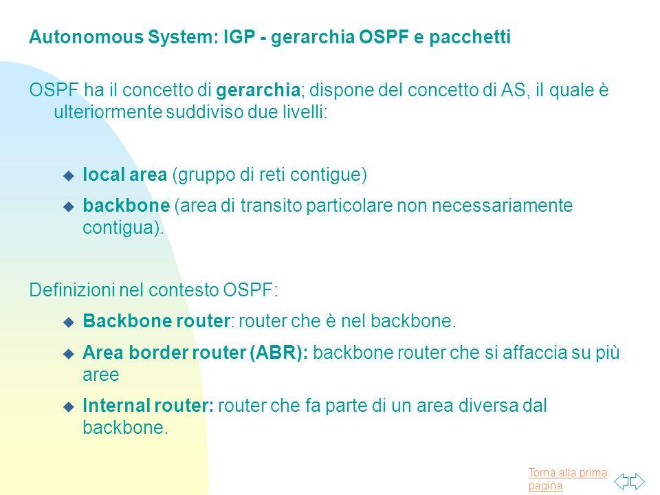 Autonomous System: IGP - gerarchia OSPF e pacchetti