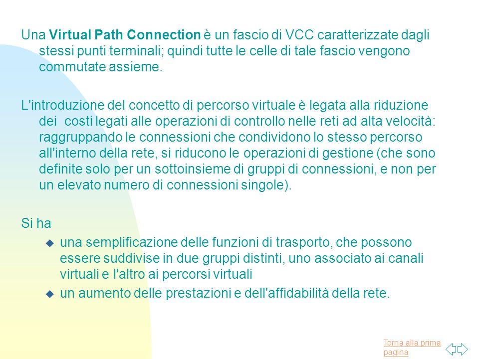 Una Virtual Path Connection è un fascio di VCC caratterizzate dagli stessi punti terminali; quindi tutte le celle di tale fascio vengono commutate assieme.