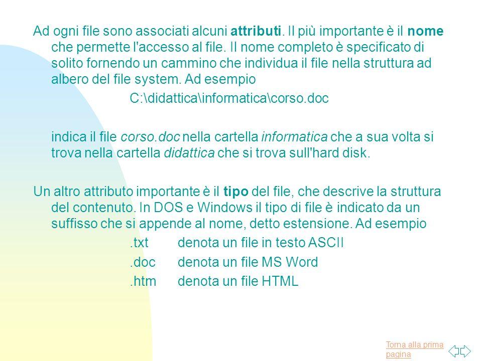 Ad ogni file sono associati alcuni attributi