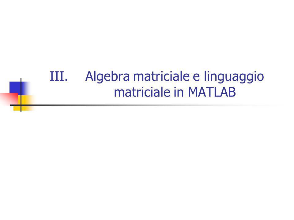 Algebra matriciale e linguaggio matriciale in MATLAB