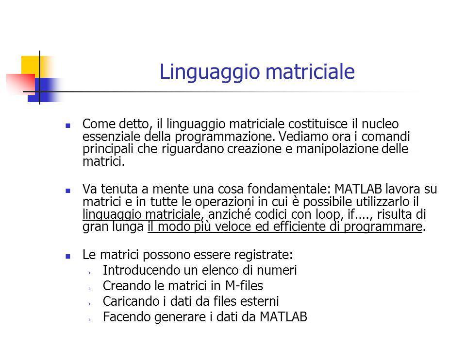Linguaggio matriciale