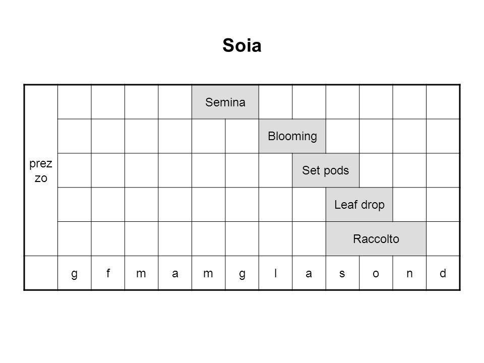 Soia prezzo Semina Blooming Set pods Leaf drop Raccolto g f m a l s o