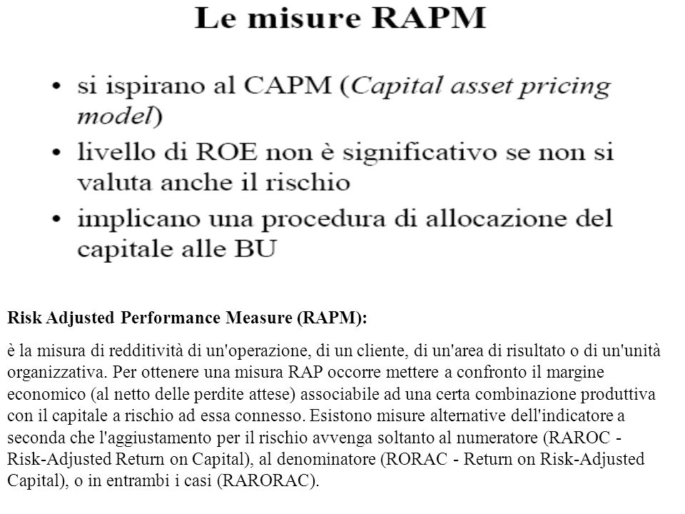 Risk Adjusted Performance Measure (RAPM):