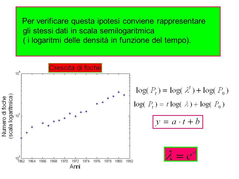 gli stessi dati in scala semilogaritmica