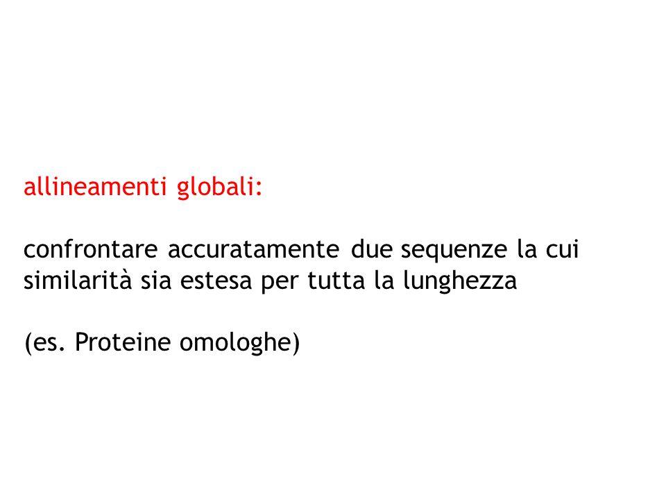 allineamenti globali:
