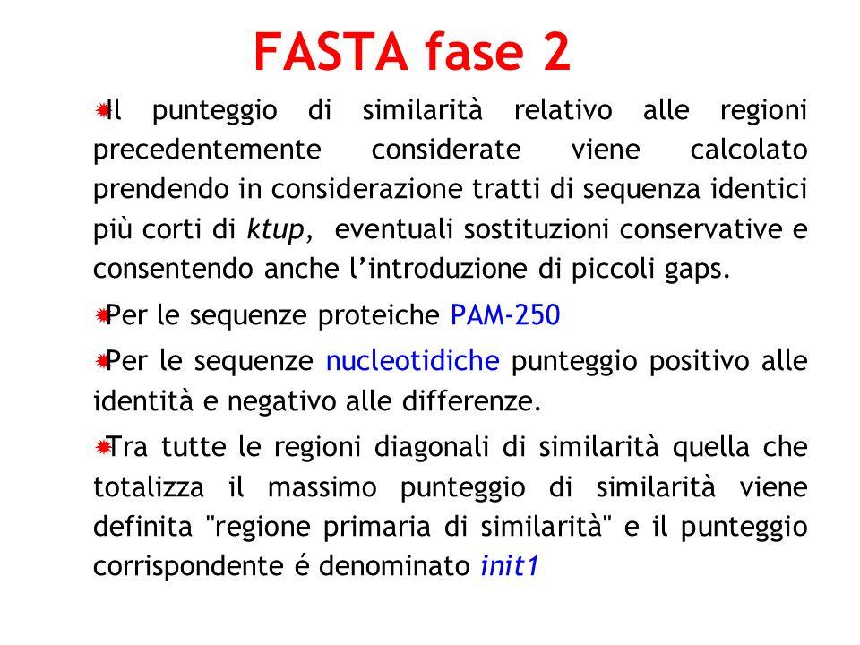 FASTA fase 2