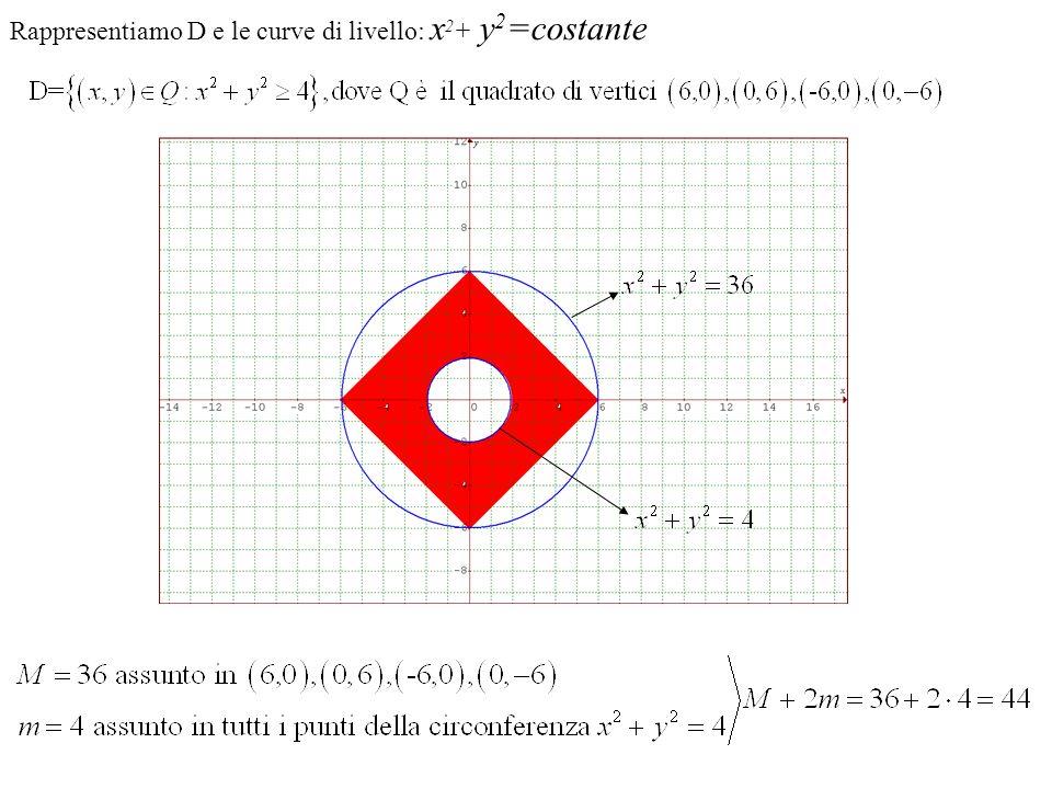 Rappresentiamo D e le curve di livello: x2+ y2=costante