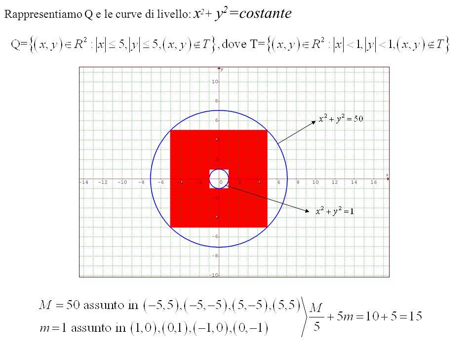 Rappresentiamo Q e le curve di livello: x2+ y2=costante