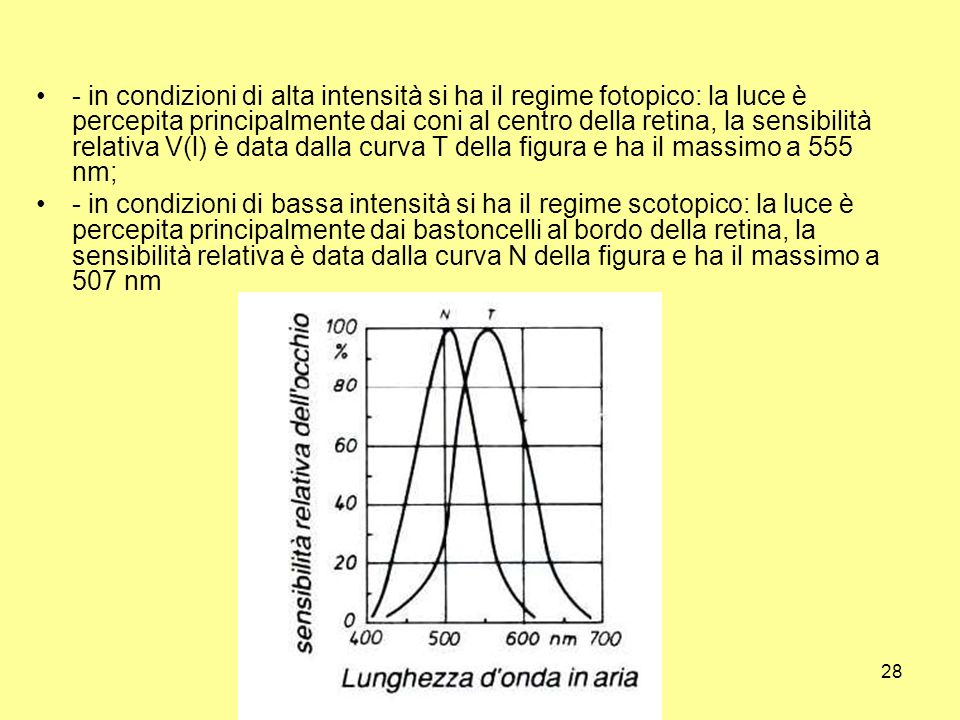 - in condizioni di alta intensità si ha il regime fotopico: la luce è percepita principalmente dai coni al centro della retina, la sensibilità relativa V(l) è data dalla curva T della figura e ha il massimo a 555 nm;