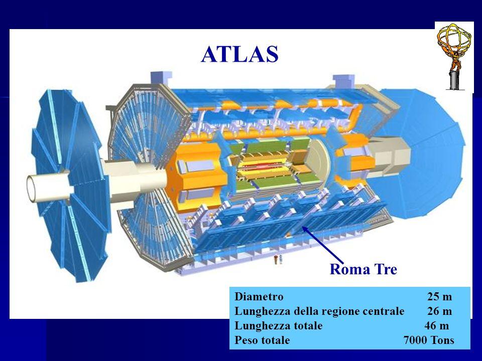 ATLAS Roma Tre Diametro 25 m Lunghezza della regione centrale 26 m
