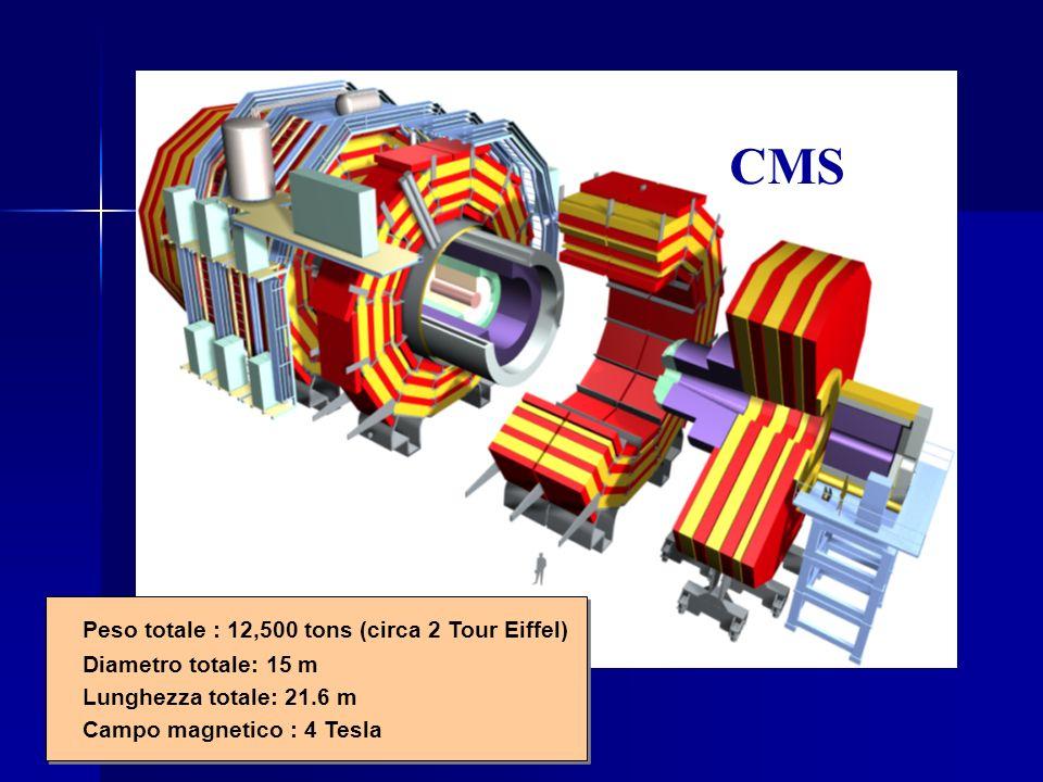 CMS CMS CMS Peso totale : 12,500 tons (circa 2 Tour Eiffel)