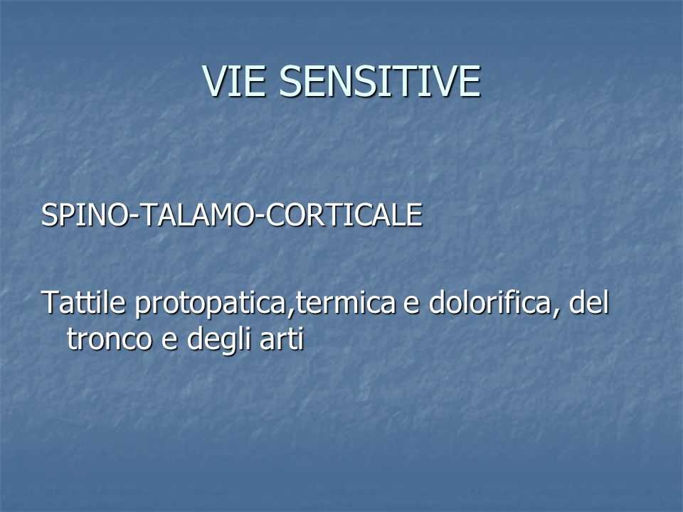 VIE SENSITIVE SPINO-TALAMO-CORTICALE