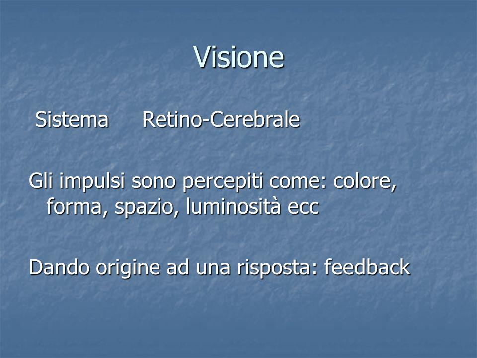 Visione Sistema Retino-Cerebrale