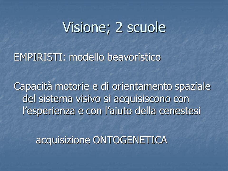 Visione; 2 scuole EMPIRISTI: modello beavoristico